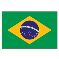 Picture for category Brazil USB Chargers