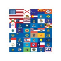 Picture for category State Flags Phone Cases